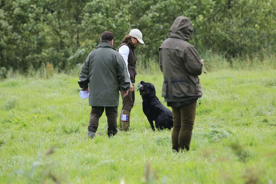 Algemeen Reglement Jachthondenproeven